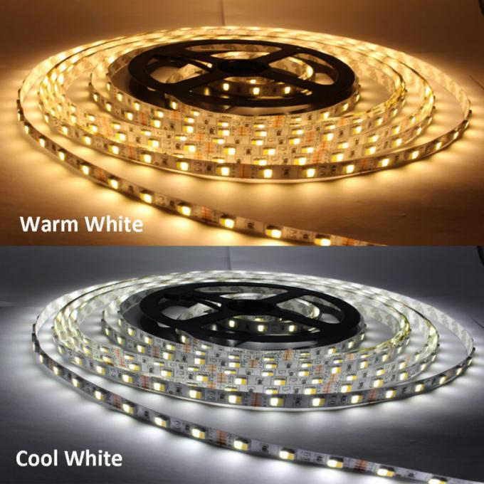 WW CW Color Temperature Adjustable 24v Led Strip Lights Waterproof IP67 CCT Dimmable Led Tape Lights