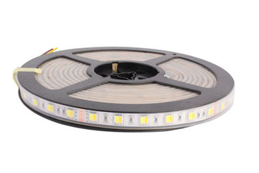 China WW CW Color Temperature Adjustable 24v Led Strip Lights Waterproof IP67 CCT Dimmable Led Tape Lights supplier