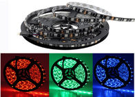 China SMD3528 5m Led Strip 12 V RGB White Warm White Waterproof Flexible Led Strip company